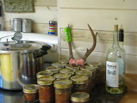 Canned_venison