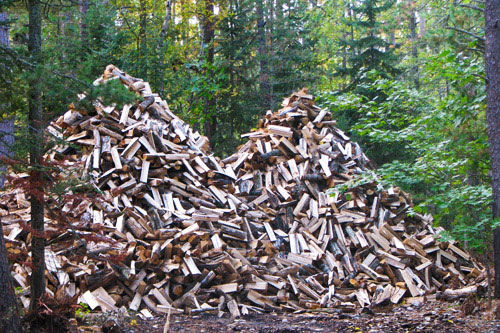 Woodpile_1378