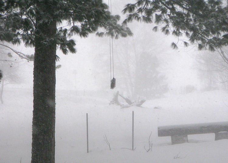 JAN-snow_1247