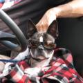Goggles_0287